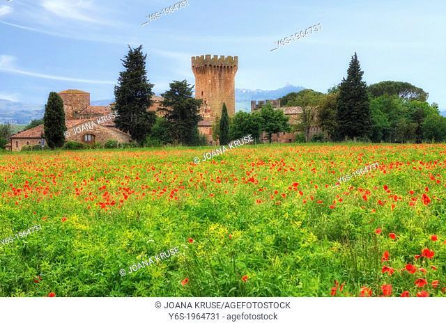 Spedaletto, Castle, Pienza, Tuscany, Italy
