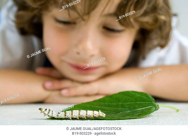 Boy with silkworm
