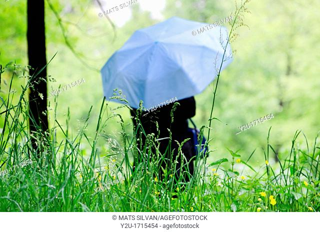 Woman with a blue umbrella on the wet green field with grass and flowers