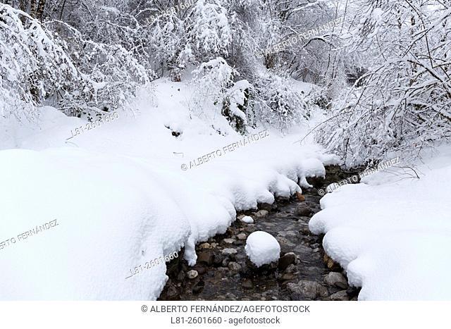 Zona nevada por el camino que va entre Les Llanes y La Viciella. Caso. Asturias. España