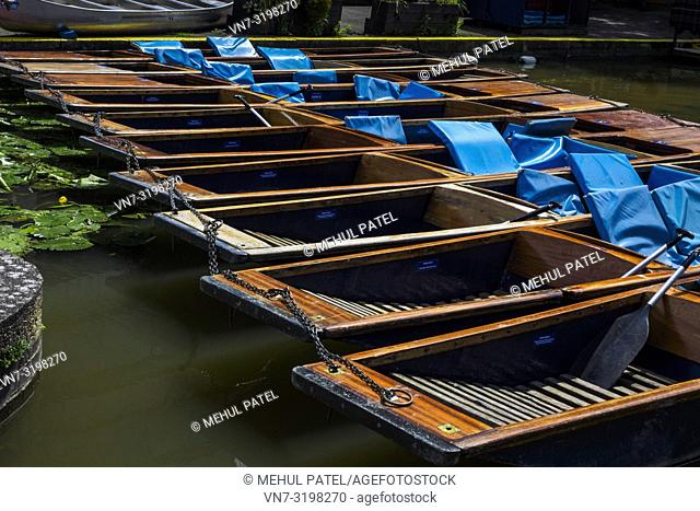 Punting boats parked on the river