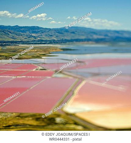 Aerial View of Pink Farm Fields