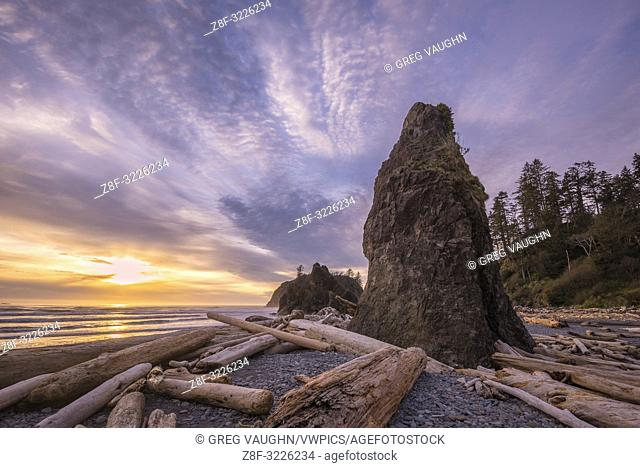 Driftwood, sea stack and sunset at Ruby Beach, Olympic National Park, Washington