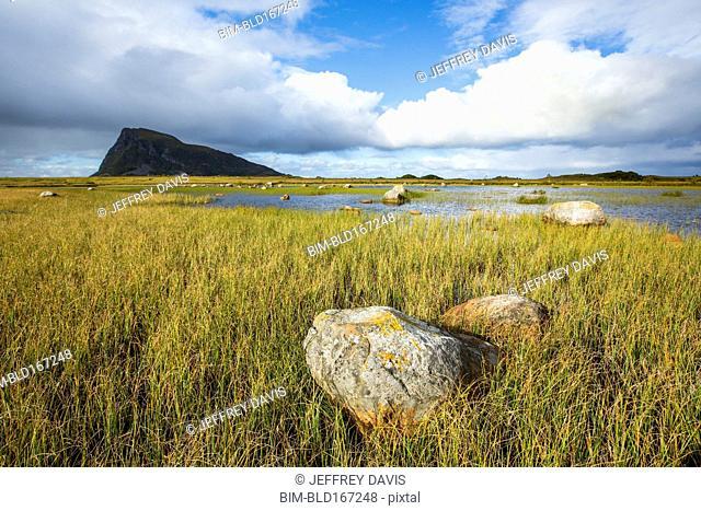 Rock formations in grassy coastline under blue sky