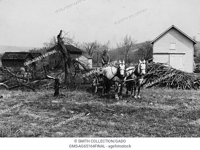Farmer on a cart pulled by two white horses, in front of tree limbs, near a wooden farmhouse and several other smaller log buildings after an icestorm and flood...