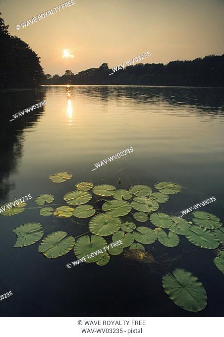 Lake Moodie - St Catharine's, Ontario, Canada