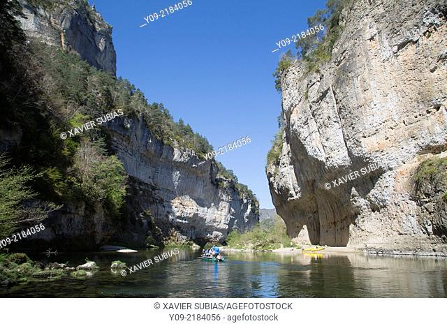The gorges of the Tarn River, Aveyron department, Midi-Pyrénées, France