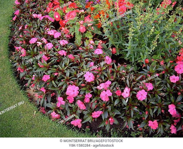 Round shaped flowerbed