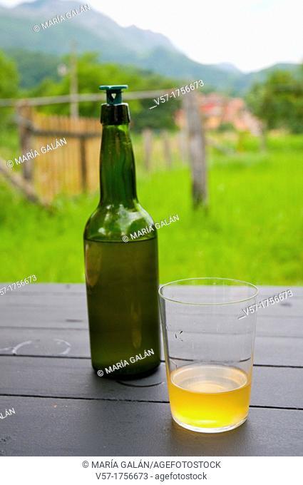 Bottle and galss of cider. Asturias, Spain