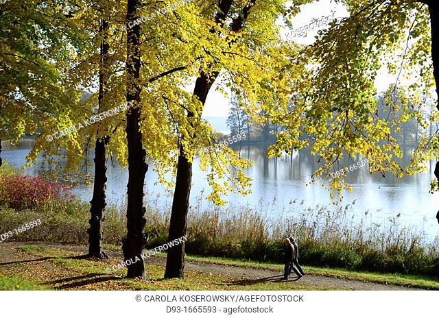 autumn landscape at a lake