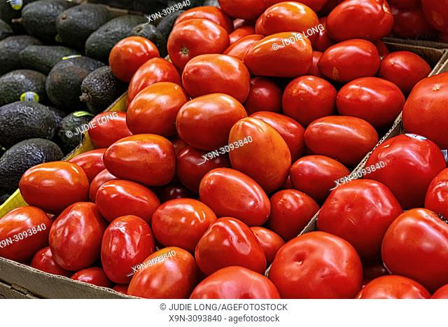 Plum Tomatoes, Piled in a Cardboard Box, Displayed and Offered for Sale in a NYC Supermarket