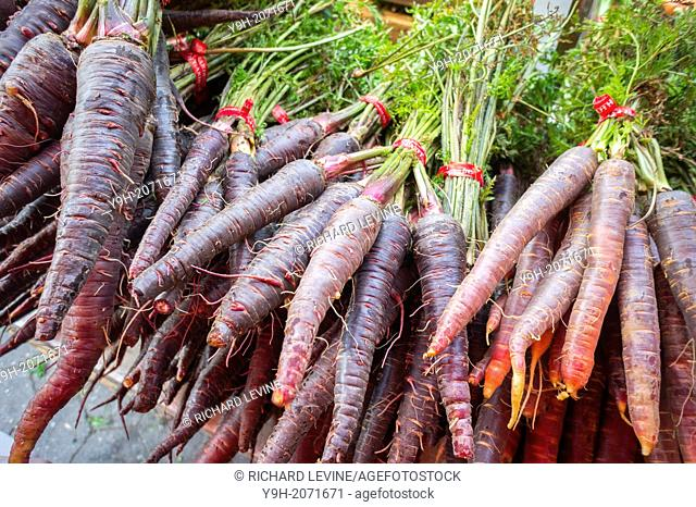 Purple carrots for sale in the Union Square Greenmarket in New York
