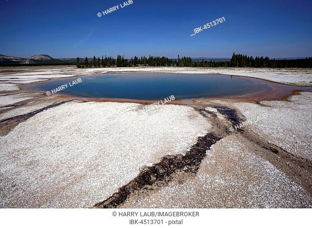 Turquoise Pool, Midway Geyser Basin, Yellowstone National Park, Wyoming, USA