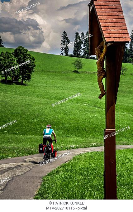 Mature man riding bike on road by grass field