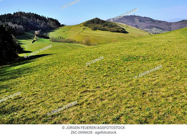 Landscape of the Kaiserstuhl, range of hills in the state of Baden-Wuerttemberg, low mountain range of southwest Germany