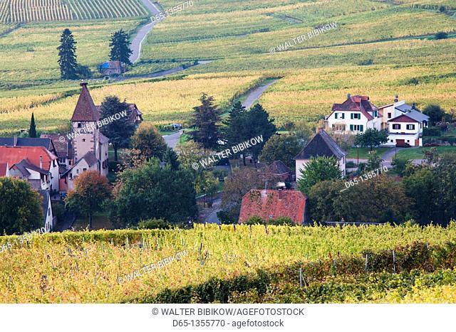 France, Haut-Rhin, Alsace Region, Alasatian Wine Route, Ammerschwihr, town buildings, dawn, autumn