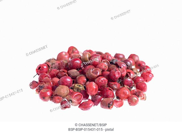 Pepper red peppercorns isolated on white background