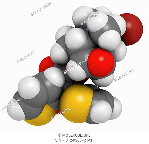 Tiotropium bromide chronic obstructive pulmonary disease (COPD) drug molecule. Atoms are represented as spheres and are colour coded: hydrogen (white)