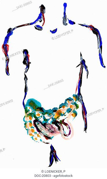 illustration - body - intestine
