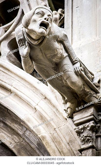 Gargoyle of the Cathedral of Saint -Michel, Carcassone, Languedoo-Roussillon, France, Western Europe
