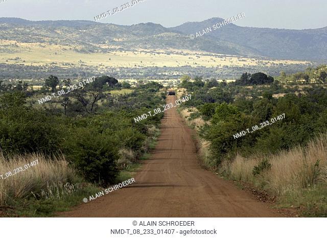 Dirt road passing through a landscape, Pilanesberg Park, North West Province, South Africa