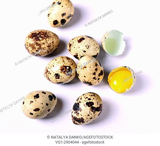 Raw quail eggs on white background, near broken egg with yolk