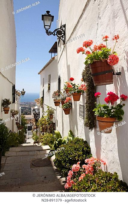 Street, Mijas, Pueblos Blancos ('white towns'), Costa del Sol, Malaga province, Andalusia, Spain