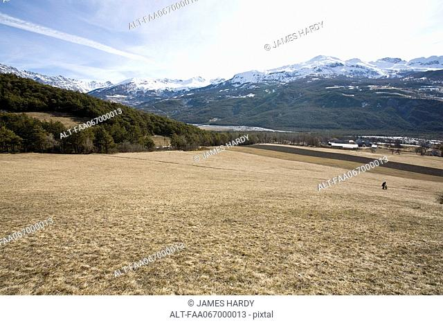 Meadow, snow-capped mountains in background