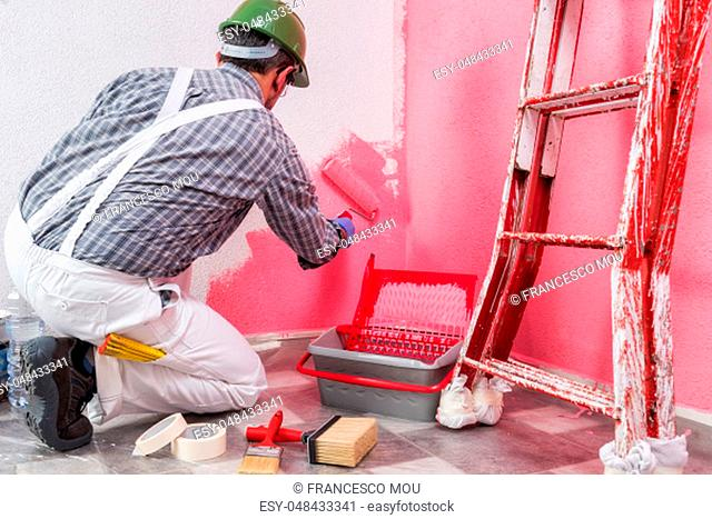 Caucasian house painter worker in white work overalls, with the roller he paints the wall with the colored painting of pink. Construction industry