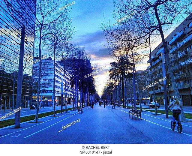 Diagonal Avenue, Poblenou, Barcelona, Catalonia
