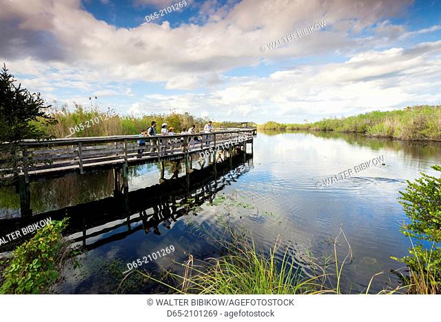 USA, Florida, Everglades National Park, The Anhinga Trail, boardwalk