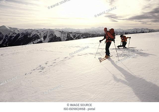 Skiers at olympic national park