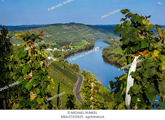 Cruise ship on the moselle river near Wintrich, Moselle valley, Rhineland-Palatinate, Germany
