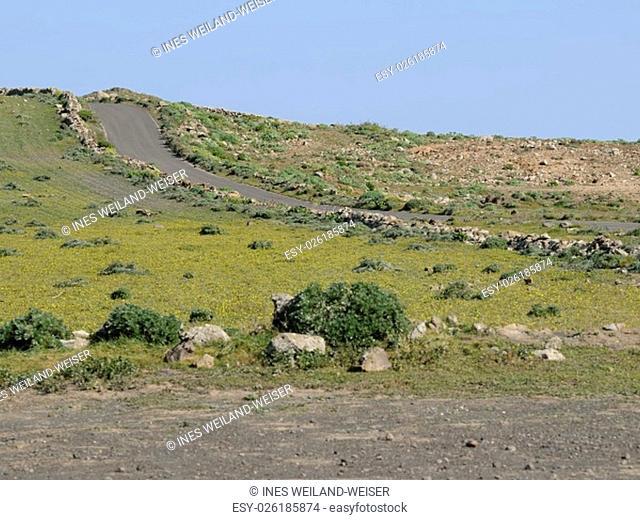 plateau in lanzarote