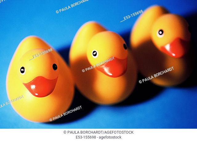 Three rubber ducks