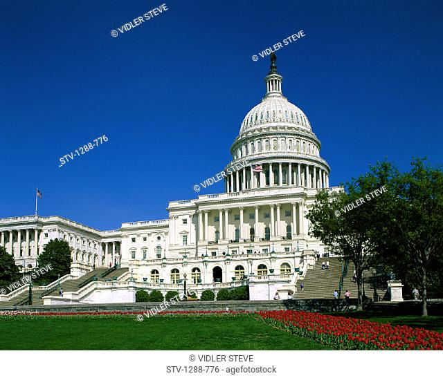 America, Capitol building, Congress, Dome, Freedom, Government, Holiday, House of representatives, Landmark, Law, Lawn, Order, S