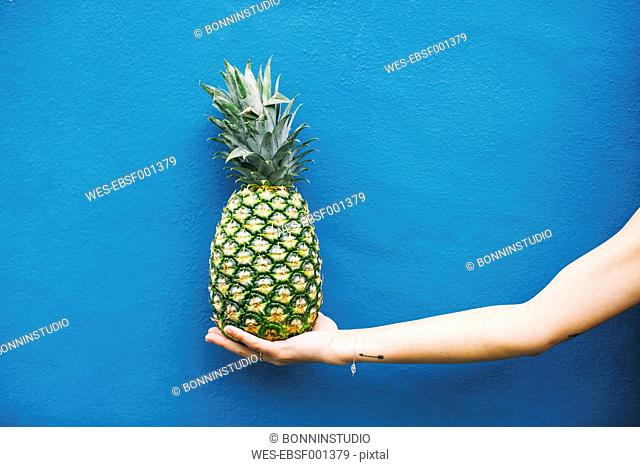 Woman holding pineapple at blue wall