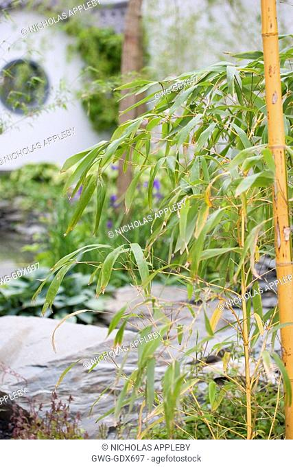 BAMBOO THROUGH THE MOONGATE GARDEN DESIGN LESLEY BREMNESS. RHS CHELSEA 2007