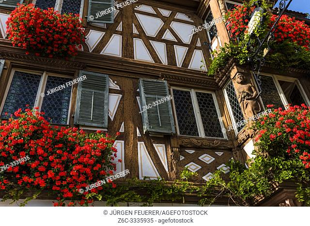 lush flower decorated house in Turckheim, Alsace, France, timbered house with carvings
