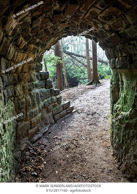 Looking out of The Tunnel on the Path to Maspie Den Falkland Estate near Falkland Fife Scotland