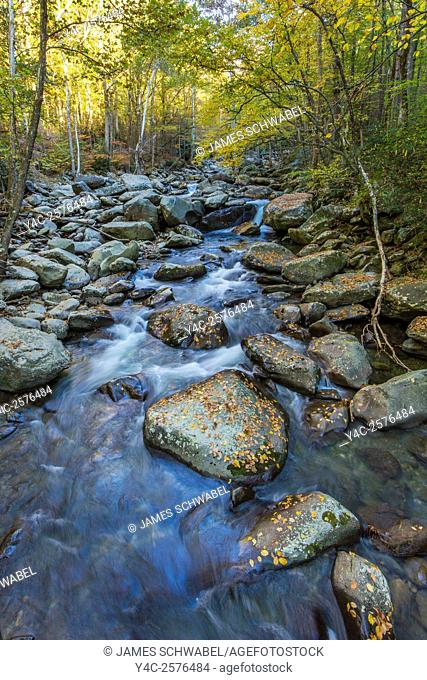 Middle Prong Little pigeon River in the Greenbrier area of Great Smoky Mountains National Park Tennessee