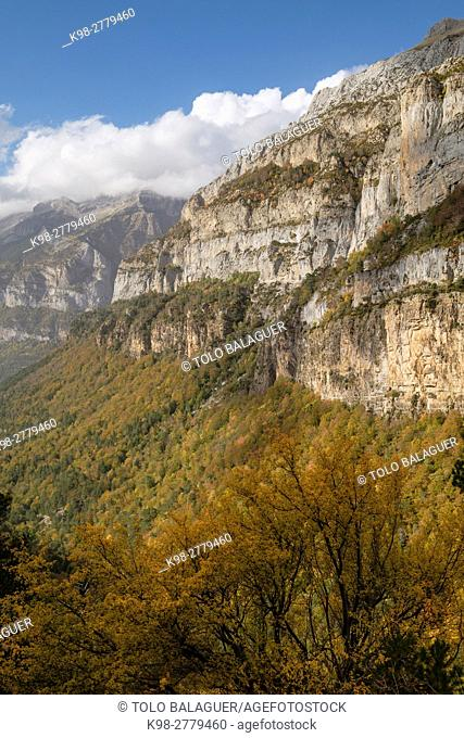 Trail GR11, ravine of Aguerri, western valleys, Pyrenean mountain range, province of Huesca, Aragon, Spain
