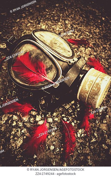 Military still life photograph on a gas mask sorrounded by rememberance red feathers. Lost to the war