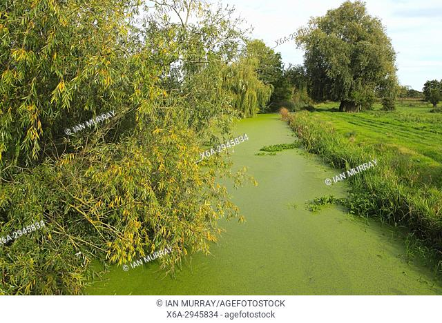 Autumn rural landscape River Deben, Ufford, Suffolk, England, UK