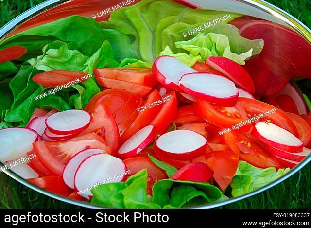 Gemischter Salat - mixed salad 02