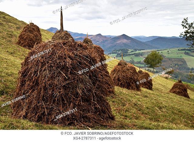 Almiares en las laderas del monte Abartán - Ziga. Baztán - Navarra. Pirineos. Spain