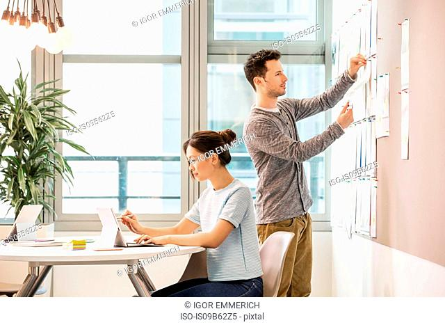 Female digital designer typing on laptop and colleague arranging mood board in office