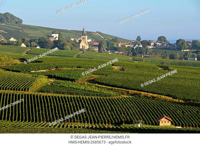 France, Marne, Ville Dommange, mountain of Reims, vineyards of Champagne with a background village and a church