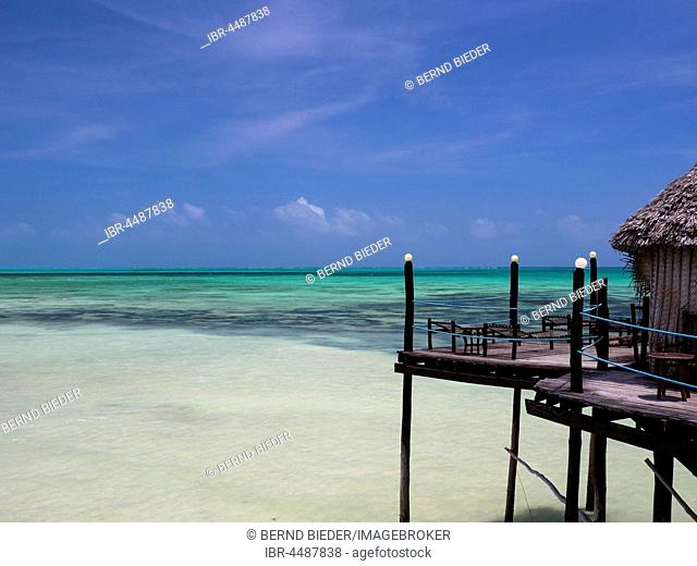 Jetty, coast, Jambiani, Zanzibar Archipelago, Tanzania