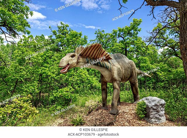 Amargasaurus at Dinosaurs Alive, life-size animatronic dinosaur, Assiniboine Park Zoo, Winnipeg, Manitoba, Canada